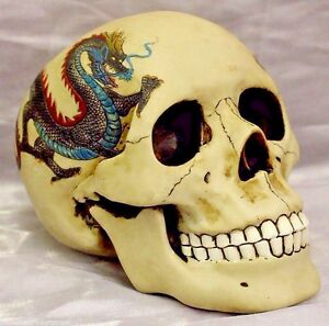 Realistic-Skull-Money-Bank-With-Dragon-Tattoo-Figurine-Skulls-amp-Skeletons-71252