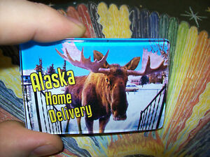 Home-Delivery-Alaska-Acrylic-Magnet-Moose-at-the-door-Ships-worldwide