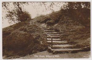 Worcestershire Carte Postale - The Pas, Myrtille Hill - (A127)