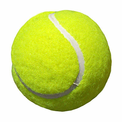 24 Edible Tennis Racquet and Balls  Iced Cupcake Toppers Fairy Cake Topper