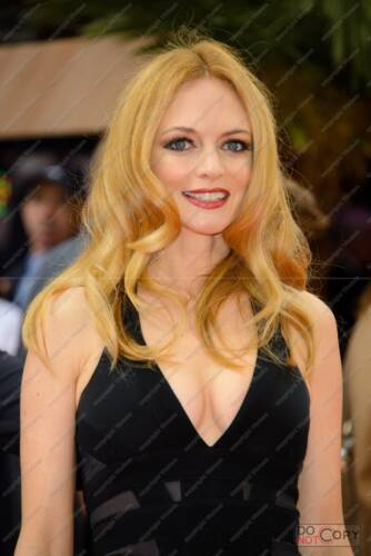 Heather Graham Poster Picture Photo Print A2 A3 A4 7X5 6X4