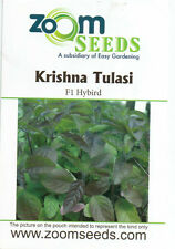 Krishna (Black) Tulsi / Tulasi Seeds(Ocimum tenuiflorum) Holy basil Seeds