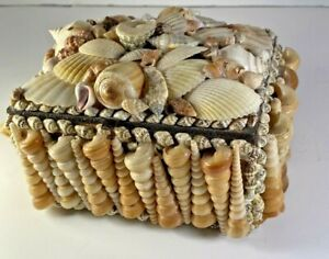 Sea-Shell-Art-Work-Jewelry-Trinket-Box-Beautifully-Laid-Out-Symmetrical-Design