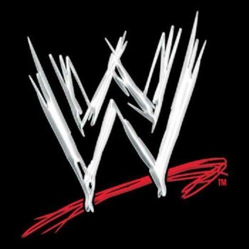 WWE Logo Iron On T-Shirt Transfer A5