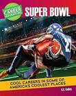 Choose Your Own Career Adventure at the Super Bowl by K C Kelley (Paperback / softback, 2016)