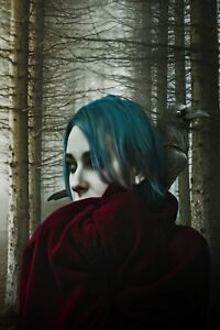 cf2c9754 Details about WOODLAND FOREST GOTHIC WOMAN RAVEN CANVAS PICTURE PRINT WALL  ART #5679