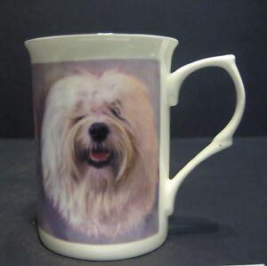 Havanese-Dog-Fine-Bone-China-Mug-Cup-Beaker