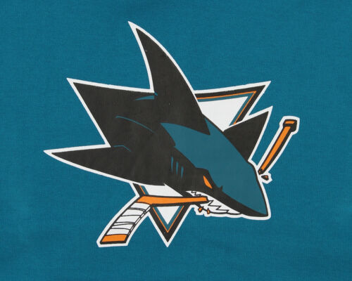 Outerstuff NHL Youth San Jose Sharks Primary Logo Fleece Hoodie