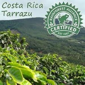 5-10-15-lbs-Costa-Rica-SHB-EP-Tarrazu-La-Pastora-Premium-Arabica-Coffee-Beans