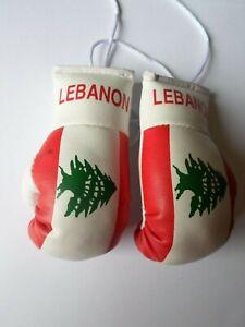FIJIAN FLAG Mini Boxing Gloves Ornament *NEW* FIJI