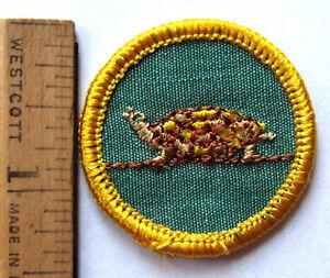 Rare Girl Scout 1963 70 Cadette Reptile Badge Amphibian Animal