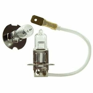 replacement 12 volt 35 watt halogen light bulb for boats. Black Bedroom Furniture Sets. Home Design Ideas