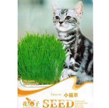 200 Seeds Cat Grass Seed For Your Cat Food Pet Food Pet Grass 1 Bag 200 Seed