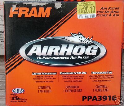 Fram Air Filter PPA3916 AirHog Washable