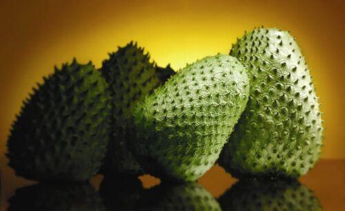 "Annona Muricata Seeds .Tropical Fruit 50 SEEDS /""prickly custard apple /"""