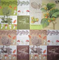 5 SERVIETTEN Pilze  Eichel Herbst Blätter Pfifferling Nuss Nüsse Haselnüsse Laub