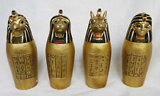 Egyptian Canopic Jar - Trinket Box - Assorted Designs - BNWT
