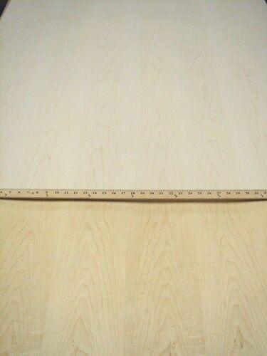 "4/' x 10/' /""A/"" grade quality 1//25/"" Maple wood veneer 48/"" x 120/"" with wood backer"