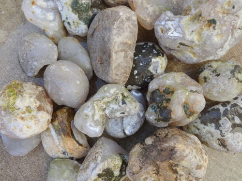 Details about  /White Island Agate cabbing cabochon lapidary rough Canal Zone 1970s by the pound
