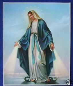 Catholic-Print-Picture-BLESSED-VIRGIN-MARY-OL-Grace-8x10-034-from-Italy