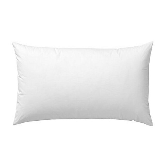 40 X 40 Rectangle Feather Down Pillow Insert Form EBay Beauteous Feather And Down Pillow Inserts
