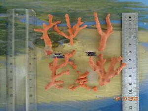 Ac140 red coral mediterranean 22 grams red coral mediterranean sea