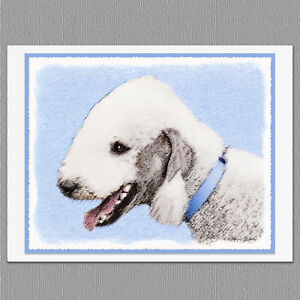 6 Great Pyrenees Dog Blank Art Note Greeting Cards