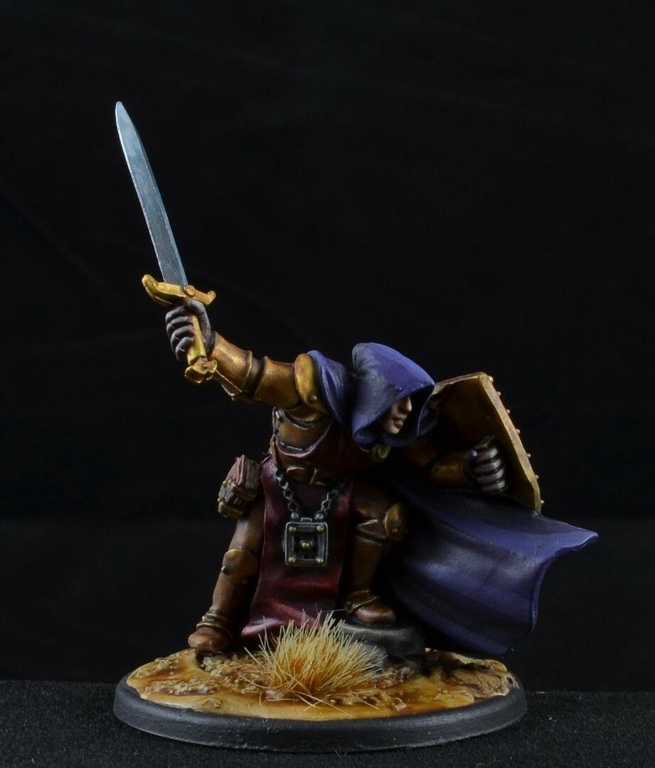 Painted Ithamar, Pale Reaver from from from Reaper Miniatures, paladin, warrior 539bdb