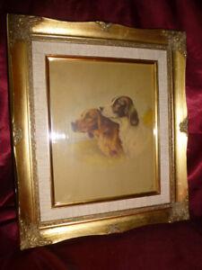 Vintage-SETTER-DOG-Art-Print-in-gold-gilt-frame-English-Red-Setter-Dog-Portrait