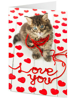 Funny cute tabby cat kitten playing with wool LOVE YOU Valentine, Birthday card