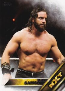 2016-Topps-Wwe-Then-Now-Forever-Nxt-Prospects-7-Elias-Samson