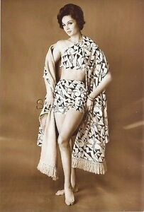 1940s-60s Sepia (4 x 6) Nude Repro Pinup RP- Bra