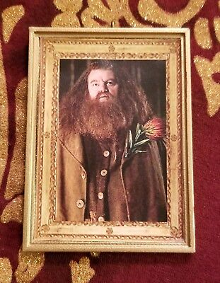 Hagrid /& Harry Diagon Alley Christmas Tree Ornament For Harry Potter Fans Hedwig