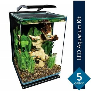 Modern 5 Gallon Portrait Fish Tank Aquarium Starter Kit with LED Lighting NEW
