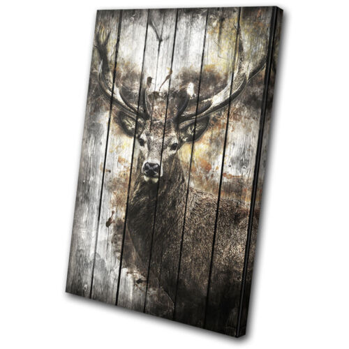 Deer Stag Forest Shabby Chic Vintage SINGLE CANVAS WALL ART Picture Print