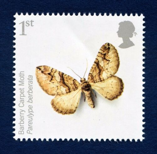 """Action for Species, """"Pareulype Bernerata""""(Barberry Carpet Moth)on 2012 stamp U/M"""
