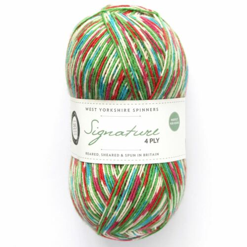 849 West Yorkshire Spinners WYS Signature 4Ply Yarn Wool 100g Fairy Lights