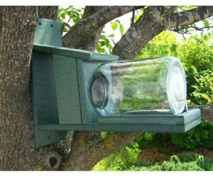 SQUIRRELS-GIFTS-FOR-SQUIRREL-LOVERS-Recycled-Plastic-Squirrels-in-Jar-Feeder