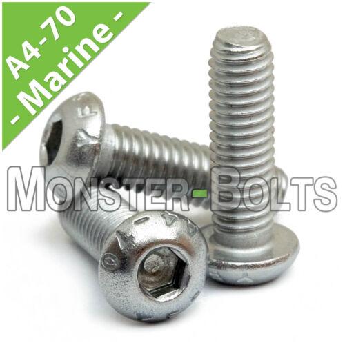 M4-0.70  Marine Grade Stainless Steel Button Head Socket Caps Screws A4 316