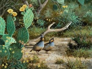 Details about Spring Blues David Drinkard Giclee on Canvas Print Blue Quail