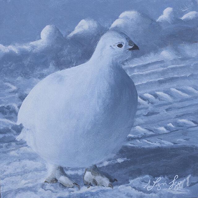Shawna Lampi-Legaree Ptarmigan ORIGINAL PAINTING 8x8 Acrylic Bird Wildlife