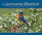 Captivating Bluebirds: Exceptional Images and Observations by Stan Tekiela (Paperback, 2008)