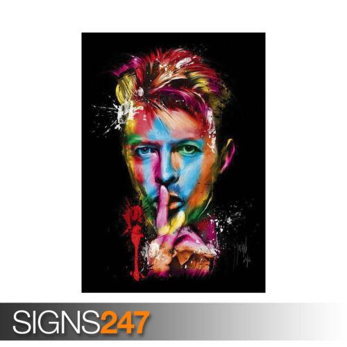 1255 Photo Picture Poster Print Art A0 A1 A2 A3 A4 DAVID BOWIE