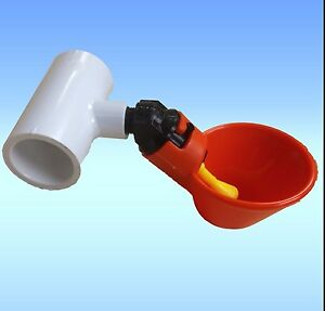 3-Poultry-Water-Drinking-Cups-amp-PVC-Tee-Fittings-Chicken-Drinker-Beaktime-Farm