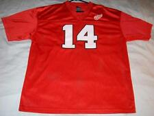 Brendan Shanahan 14 NHL Hockey Pro Edge Vintage Red Wings Sewn Mens Jersey Large