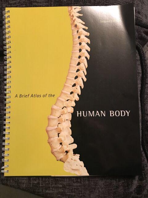 A Brief Atlas of the Human Body by Nina Zanetti, Patricia Wilhelm, Matt...