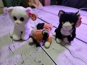 Ty beanie babies lot Bianca, Fussy,  & Chip (No Tag)