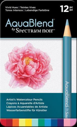 AquaBlend Arts /& Crafts Pencil Set 12pk Vivid Hues Spectrum Noir