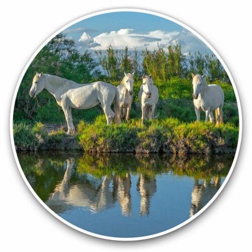 2 x Vinyl Stickers 10cm Grey White Horse Pony Equine Girls Horses Cool Gift #2