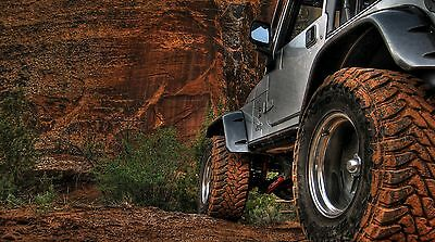 """42/"""" x 24/"""" LARGE WALL POSTER PRINT NEW. Jeep Rubicon Truck"""